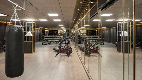 Luxury Gym, Members' Club, The Lanesborough Club & Spa