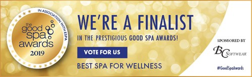 The Lanesborough Club & Spa London Good Spa Guide Awards 2019 Best for Wellness